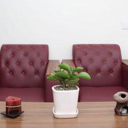 بهترین مرکز مشاوره خانواده در تهران